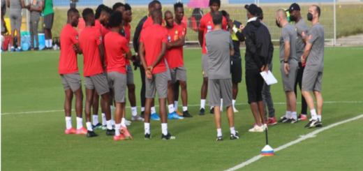 indomitable lions of Cameroon